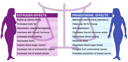 Our Hormones in Blance (graphic courtesy of fibroidelimination.com/)